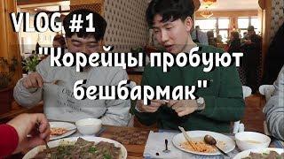 VLOG #1 - Корейцы пробуют бешбармак