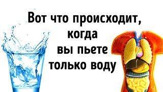 Что Будет, Если Все Напитки Заменить Водой