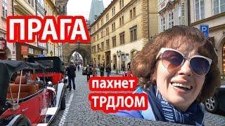 ПРАГА ЧЕХИЯ. Вся Прага пахнет ТРДЛОМ. Уличная еда. Прогулка по Праге